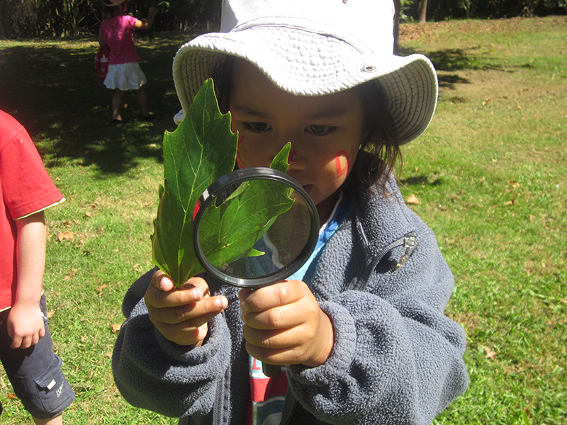 girl magnifying leaf